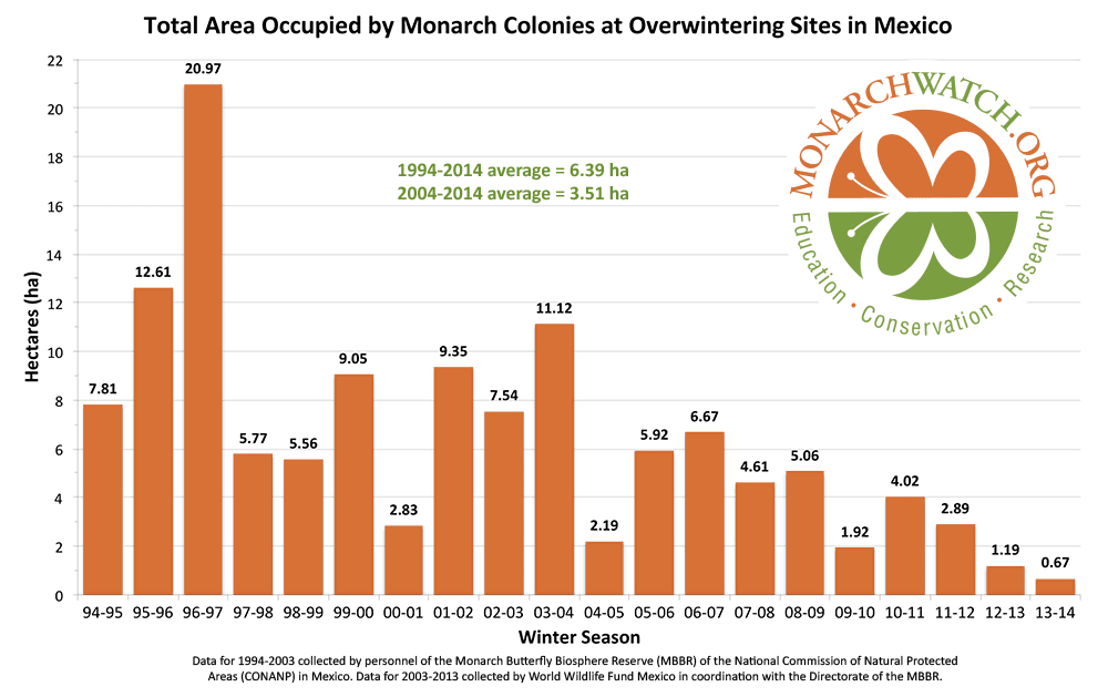 graph of monarch butterfly decline - support pollinators