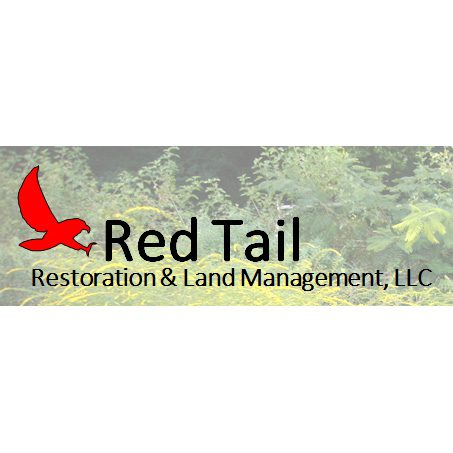 Red Tail Restoration logo